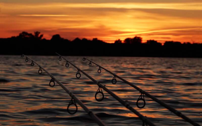 Install Fishermans Cove Kodi